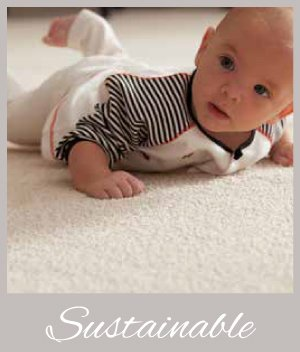 Karastan Sustainable Carpet